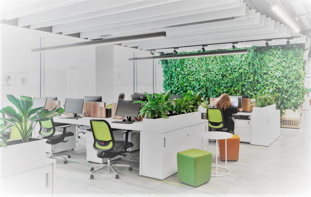Экологически чистый офис